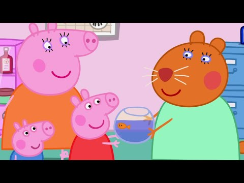 Peppa Pig English Episodes | Peppa Pig and Goldie the Fish  | Peppa Pig Official
