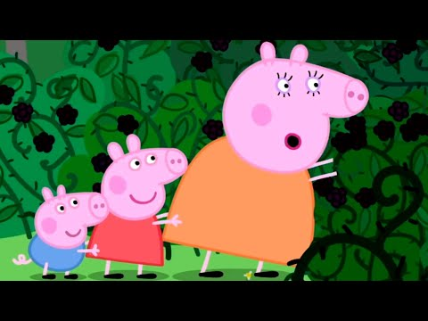 Peppa Pig English Episodes | Peppa Pig visits the Mystery Fountain | Peppa Pig Official
