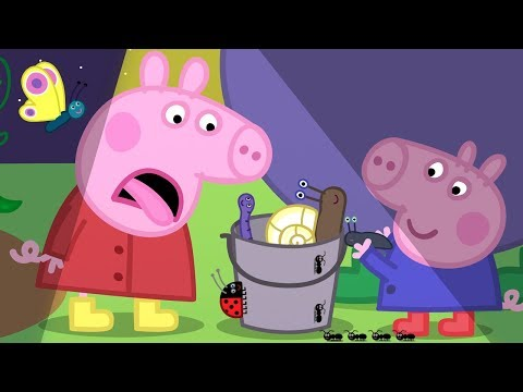 Peppa Pig English Episodes | Night Animals with Peppa!  Peppa Pig Official