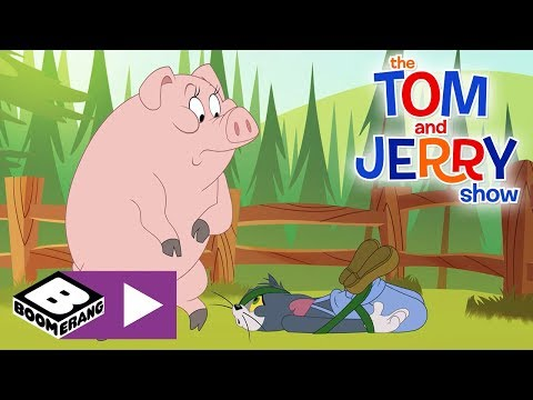The Tom and Jerry Show | Pig Ties Up Tom | Boomerang UK